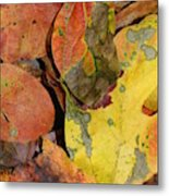 Falling Into Fall Metal Print