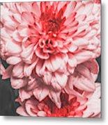 Flower Buds Metal Print