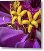 Flowers Within Flowers Metal Print