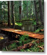 Forest Foot Bridge Metal Print