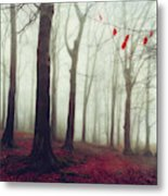 Forest In December Mist Metal Print