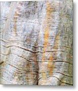 Foster Trees 4 Metal Print