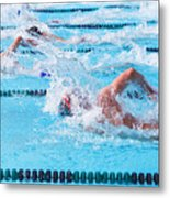 Freestyle Swimmers Racing Metal Print