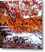 French Creek 15-107 Metal Print