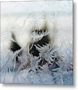 Frost From Canada Metal Print
