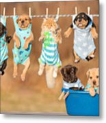 Funny Group Of American Staffordshire Metal Print