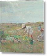 Gathering Flowers, Shinnecock, Long Island, 1897 Metal Print