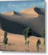 Mountains Of Singing Sand Metal Print