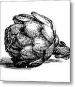 Globe Artichoke | Antique Culinary Metal Print