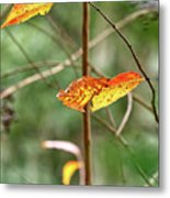 Gold Leaves And Branches Metal Print