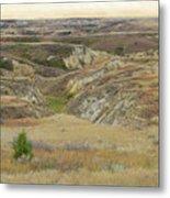 Golden Dakota Prairie Reverie Metal Print