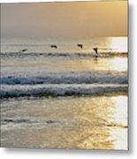Golden Daybreak Metal Print