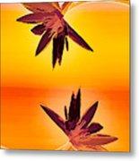 Golden Duo Water Lilies Metal Print