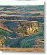 Golden Grasslands Enchantment Metal Print