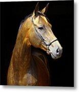 Golden Horse Metal Print