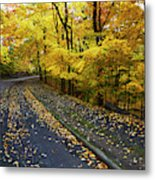 Golden Road Metal Print