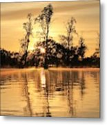 Golden Start Metal Print