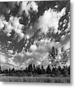 Good Harbor Shoreline Black And White Metal Print