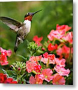 Graceful Garden Jewel Metal Print