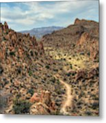 Grapevine Mountain Trail Metal Print