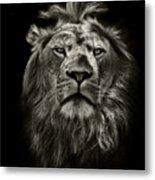 Graphic Black And White Lion Portrait Metal Print