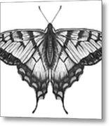 Graphite Illustration Of A Beautiful Metal Print
