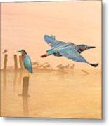 Green Heron Sunrise Metal Print