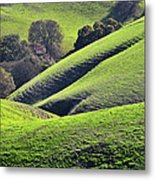 Green Rolling Hills Of Central Metal Print