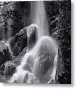 Grizzly Falls Metal Print