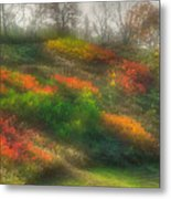 Ground Bouquet No. 3 - Somewhere In Greene County, Pennsylvania - Autumn Metal Print