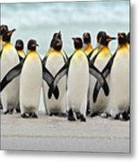 Group Of King Penguins Coming Back Metal Print