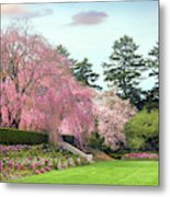 Weeping Cherry And Tulips Metal Print