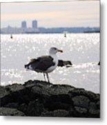 Gull Isle II Metal Print