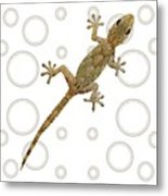 H Is For House Gecko Metal Print