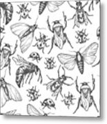 Hand Drawn Vector Pattern With Insects Metal Print