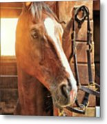Handsome Cash Metal Print