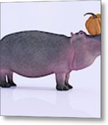 Happy Hippo And Pumpkin Metal Print