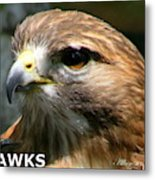 Hawks Mascot 2 Metal Print