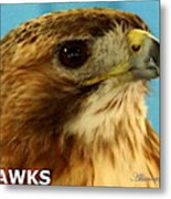 Hawks Mascot 3 Metal Print