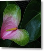 Hearts And Flowers Metal Print