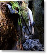 Hidden Falls Sombrio Beach 3 Metal Print