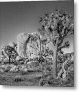 Hidden Valley Rock Metal Print