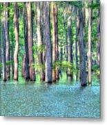 High Bayou Water Metal Print