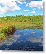 Hint Of Autumn Metal Print