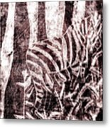 How The Leopard Got His Spots Zebra D16ed3 Metal Print