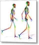 Human Skeleton Pair Metal Print