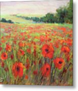 I Dream Of Poppies Metal Print