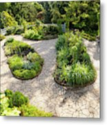 If Gulliver Had A Herb Garden Metal Print