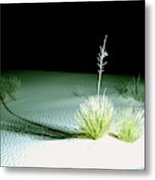 Illuminated Yucca At Night In White Sands National Monument, New Mexico - Newm500 00108 Metal Print