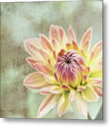 Impression Flower Metal Print